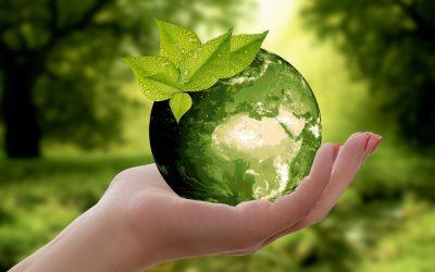 Per una alimentazione sana e sostenibile