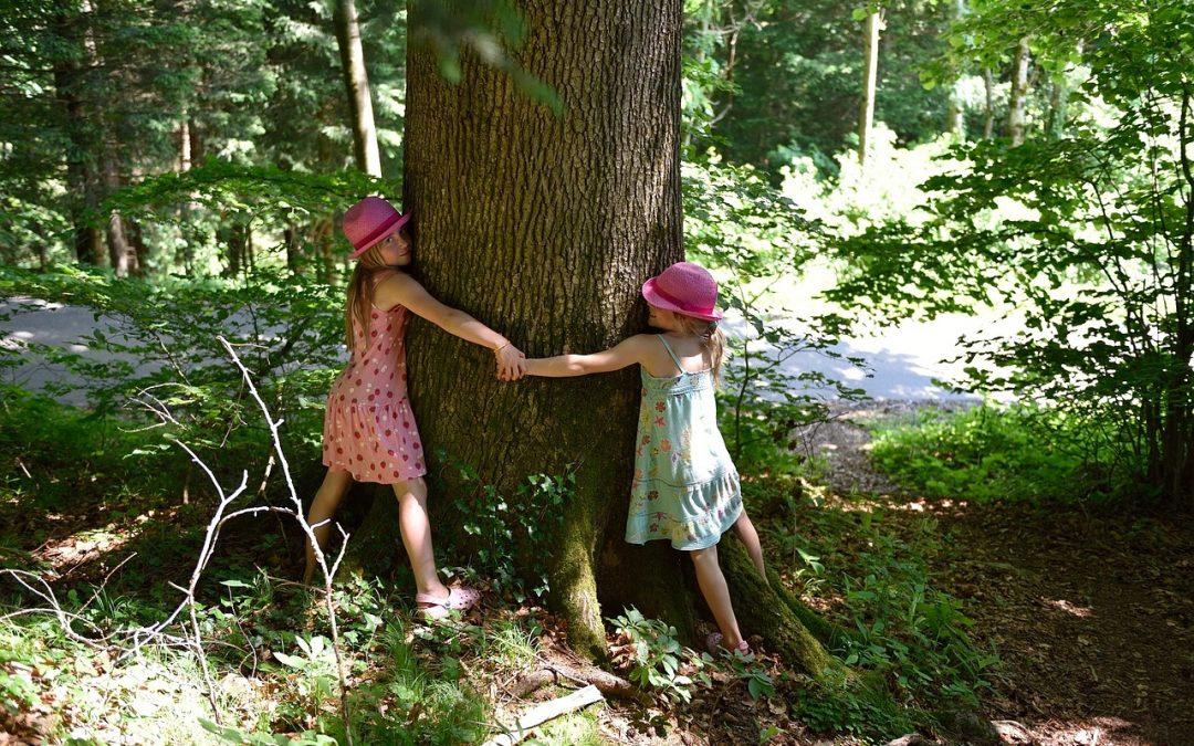 AbbracciAMO la natura, il secondo E-20 è una challenge