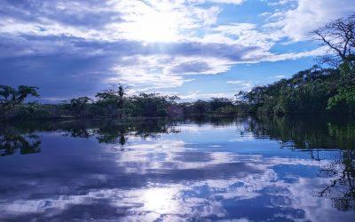 Giornata mondiale dell'azione per l'Amazzonia